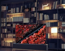 LG Debuts Rollable OLED TV at CES 2019
